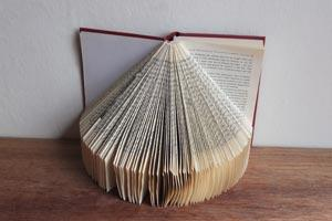 Standing Fold Book